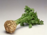 Conservarea legumelor prin deshidratare