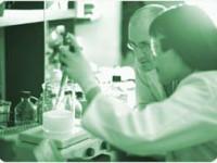 Teste genetice pentru determinarea legaturilor familiale