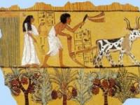 Secretele piramidelor: Călătorie în Egiptul Antic pentru copii