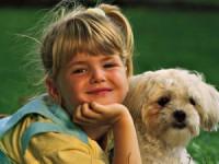 EDUMAX, proiect de educaţie a copiilor privind creşterea şi îngrijirea animalelor