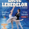 Lacul lebedelor va pus în scenă pe 12 decembrie la TNB