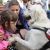 """Sute de copii şi bătrâni s-au bucurat de vizitele câinilor de terapie de la """"Doctor cu 4 lăbuţe"""""""