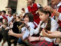 Unul dintre primii patru câini de terapie din România, s-a stins…