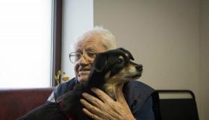 terapie cu animale
