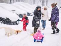 Ghid de supravieţuire în sezonul rece